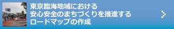 東京臨海地域における安心安全のまちづくりを推進するロードマップの作成